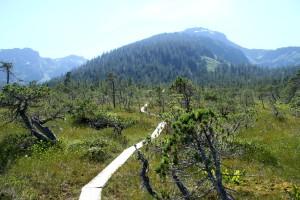Mt Jumbo 011