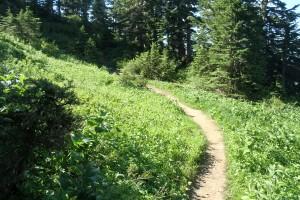 Mt Jumbo 035