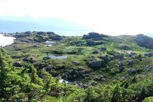 Mt Jumbo 130