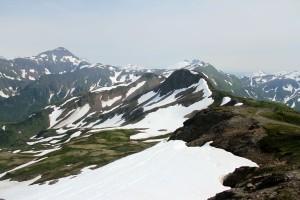 Mt Juneau, Peterson 178