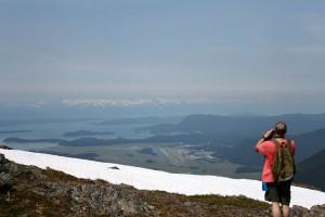 Mt Juneau, Peterson 181
