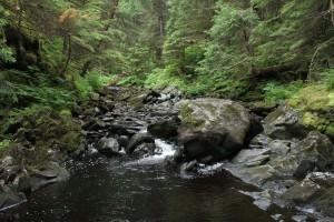 Mt Juneau, Peterson 315
